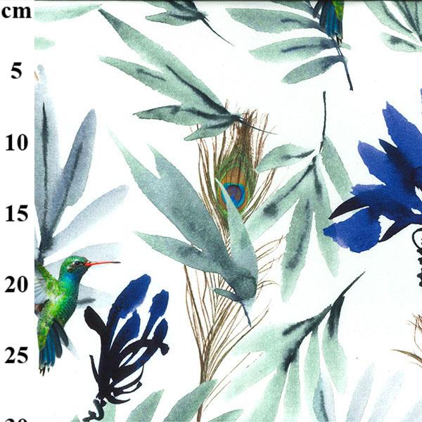 Feathers Blue White Cotton Jersey Hummingbird